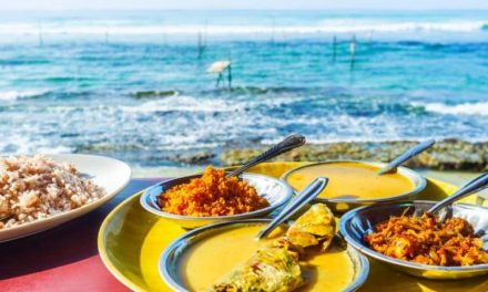8 Healthy Travel Food for Nomads