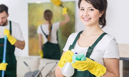 What are the Advantages Of Having A Domestic Helper?