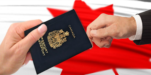 Top Immigration Consultants in Delhi