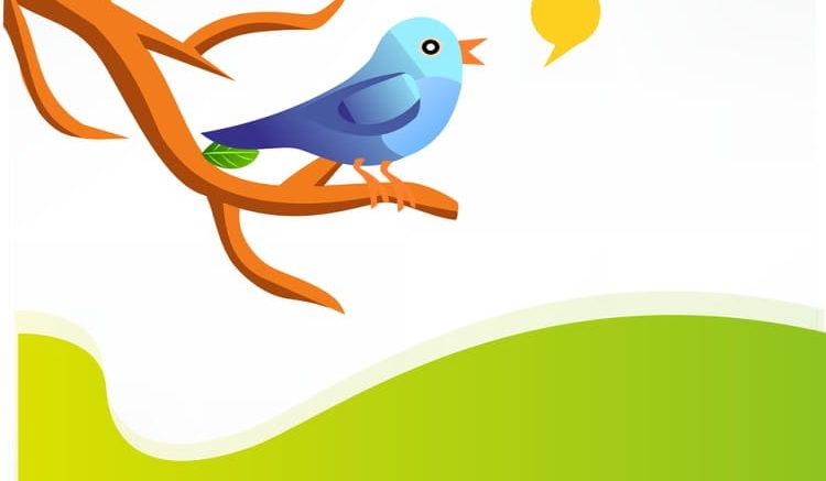 Twitter Bio Ideas