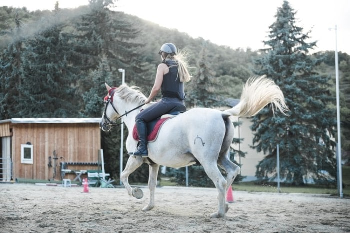 7 Health Benefits of Horseback Riding