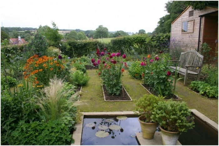 Kitchen Garden Tips