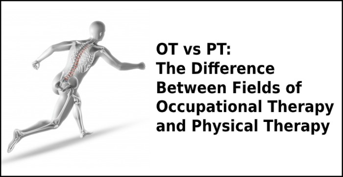 OT vs PT: The Difference between Fields of Occupational Therapy and Physical Therapy