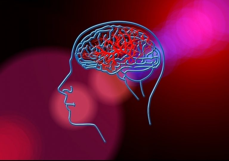 How To Ensure Good Health for Your Brain?
